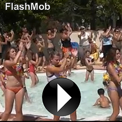 Video Aloha Camping Club